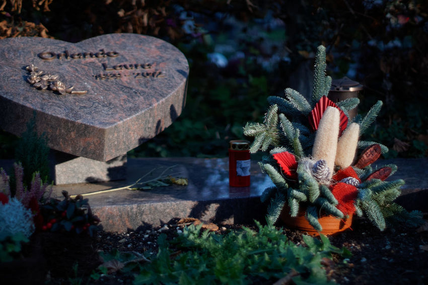 Ikebana Grave No People Stone Cemetery Tombstone Solid Nature Religion Close-up Day Spirituality Focus On Foreground Belief Outdoors Text Memorial High Angle View Selective Focus
