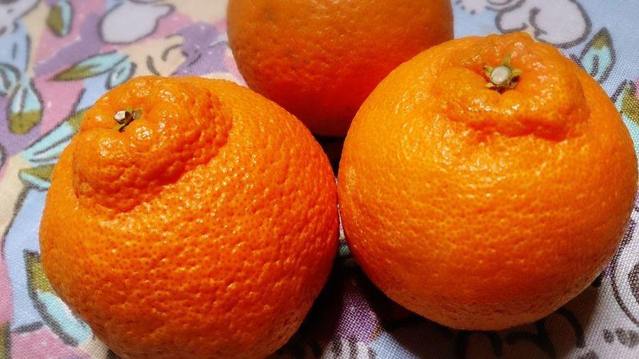広島からお取り寄せ☆デコポン!! Foodporn Yummy Fruits Fruits Decopon