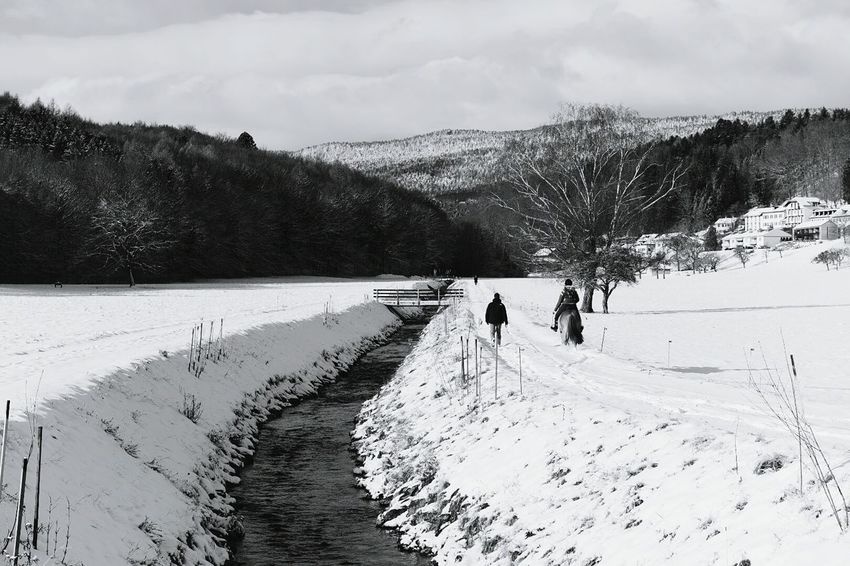 Nikon Switzerland Landscape It's Cold Outside Nikon D750 Snow Sky Snow Day Tree Gimel, VD Peoplephotography Black & White Water_collection Man Landscape_photography Nikonphotography Nikon Dslr Nikonphotographer Tranquil Scene Woman Horse Bridge Landscapes With WhiteWall