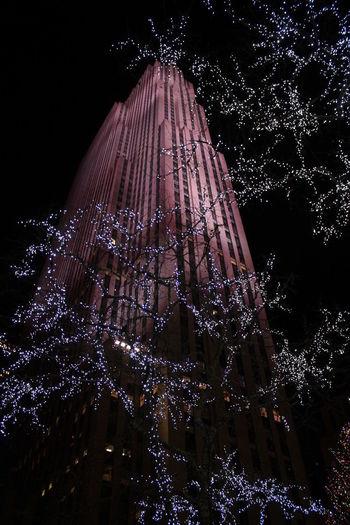 Christmas Christmas Decoration Low Angle View Night No People Rockeffeller Plaza The Architect - 2017 EyeEm Awards Tree