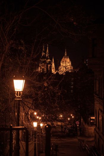 The mood swings Parliament Building Budapest Hungary Night Illuminated Building Exterior Architecture Built Structure Tree Street Lighting Equipment Street Light Bare Tree Outdoors City