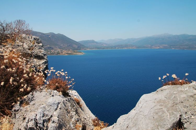 Hanging Out Blue Sea And Blue Sky Check This Out Wonderful World Greece Perfect Day Sunshine Day Silence Beautiful Nature In Greece Wildflowers Wildflowers And Stones Island Amazing View