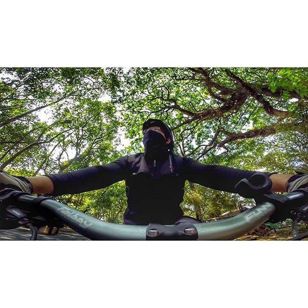 Tree Bicycle Fatbike Fatbikes fatboy funn merida contin mxl val 2015 gopro gopro3plus goproblackedition gopro_everything gopro_4life gopro_moment goprooftheday 🚲