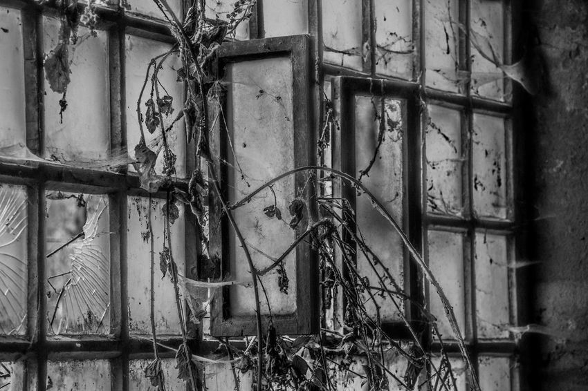 Abandoned Metal Weathered Damaged No People Architecture Building Decline Window Bad Condition Old Broken Built Structure Deterioration Run-down Rusty Obsolete Indoors  Wall - Building Feature Destruction Ruined Bw Photography BW Collection EyeEmNewHere Eye4black&white
