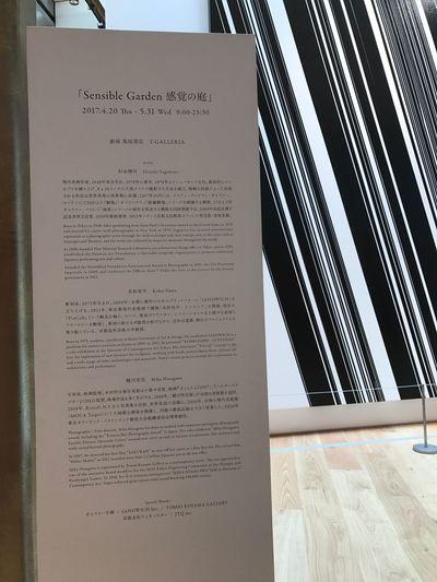 Exhibition. Text Communication Indoors  Paper No People Close-up Day EyeEm Kohei Nawa Nawakohei Art ArtWork Ginzasix Modern Design Ginza Artist