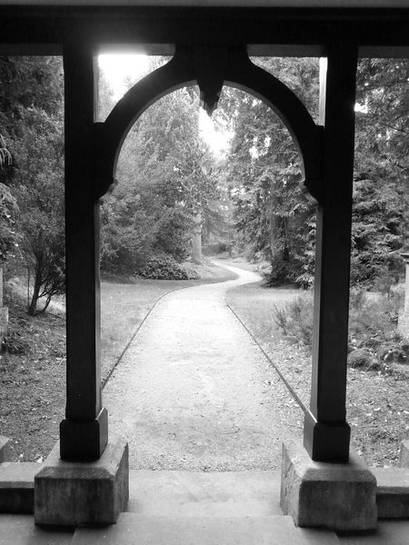 Photography Gardens Blackandwhite