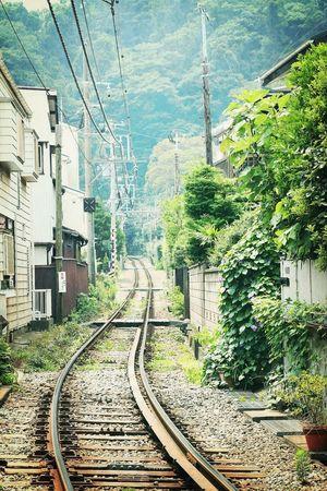 """鎌倉 Introducing Culture Of Japan Which Must Be Left To The Future…… """"未来に残す日本の文化"""" Don't Be Square"""
