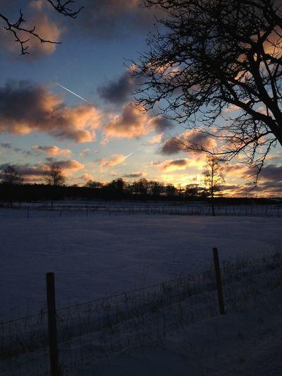 Lovely Winterwonderland