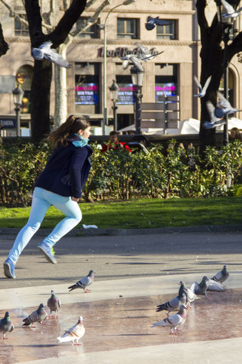 Girl chasing a flying pigeon. Bird Chase Chasing City City Life Day Dove Doves Girl Leisure Activity Outdoors Person Pigeon Pigeons Running Running Girl Spring Springtime Street Photography Showcase April Telling Stories Differently Up Close Street Photography Showing Imperfection The Street Photographer - 2016 EyeEm Awards Adapted To The City