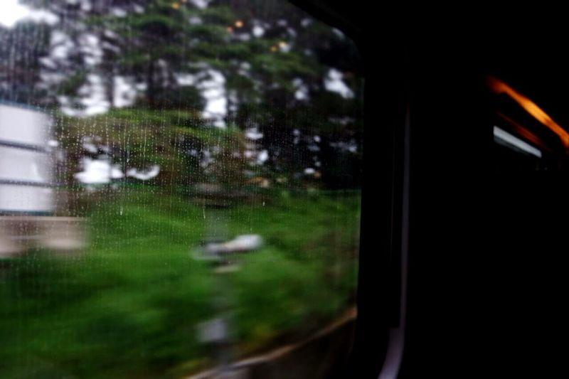 South Train