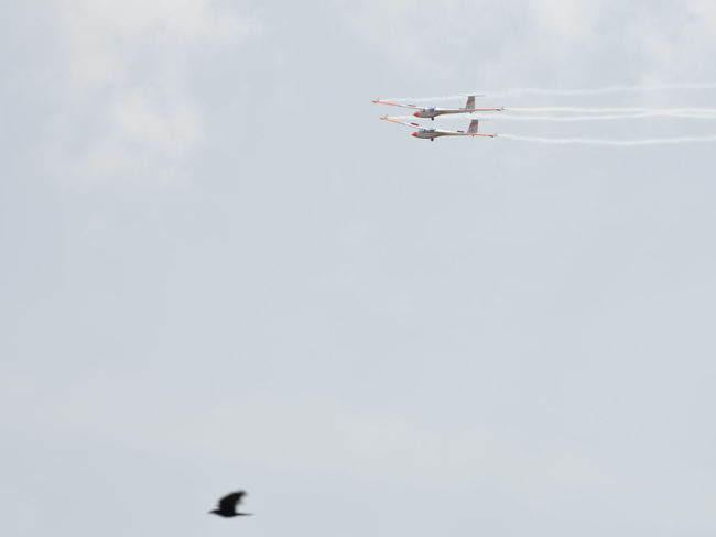 Competition First Smoke White Wings Air Club Romanian  Air Show Aerobatics Teamwork Team Clear Sky Bird Togheter Glider Exercising Exercise Flying Fly In The Air Airshow Aerobatics Flying Air Vehicle Teamwork Sky Formation Flying Acrobatic Activity