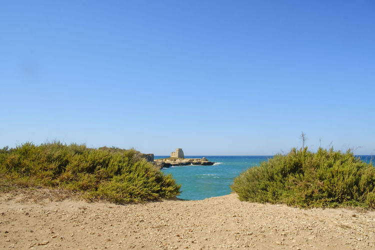 Apúlia Architecture Beach Beauty In Nature Blue Building Exterior Built Structure Clear Sky Day Italy Melendugno Nature No People Outdoors Salento Salento Puglia Sand Scenics Sea Sky Tranquil Scene Tranquility Travel Destinations Tree Water