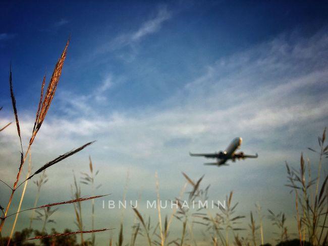 Landingplane Klia Kuala Lumpur International Airport Sepang IPhone IPhoneography Iphone 6 Plus