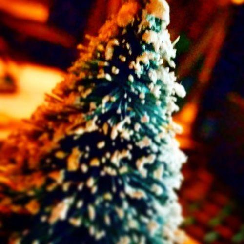 Il Natale  si avvicina. Naples Manfrys Napoli follows like likebackteam albero