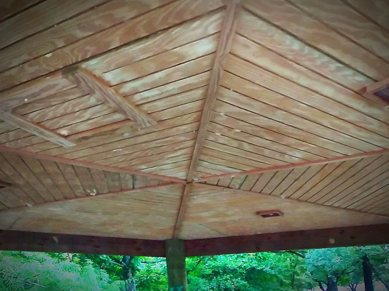 day, no people, wood - material, outdoors, roof, close-up, nature
