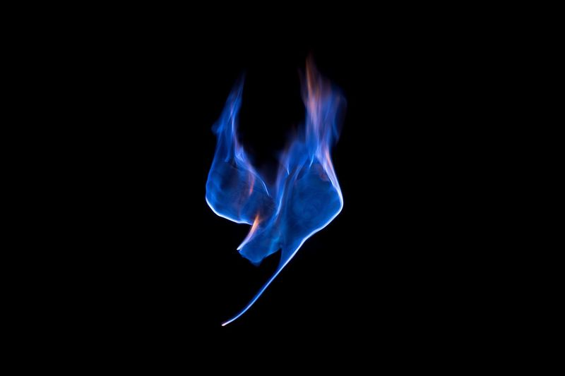 Burning Flame Smoke - Physical Structure Heat - Temperature Blue Black Background Studio Shot No People Close-up