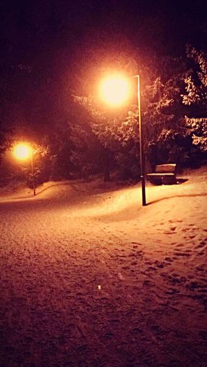 Cold Temperature Winter Snow Feerique