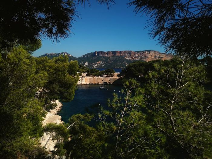 Calanque de Port Miou - Cassis #zen Lifestyles Naturelovers Nature_collection Nature #cassis PACA France Point Of View Panorama Panoramic Landscape Tree Water Politics And Government Luxury Sky Calm Tranquility Tranquil Scene Ocean Rocky Mountains Countryside Idyllic Horizon Over Water