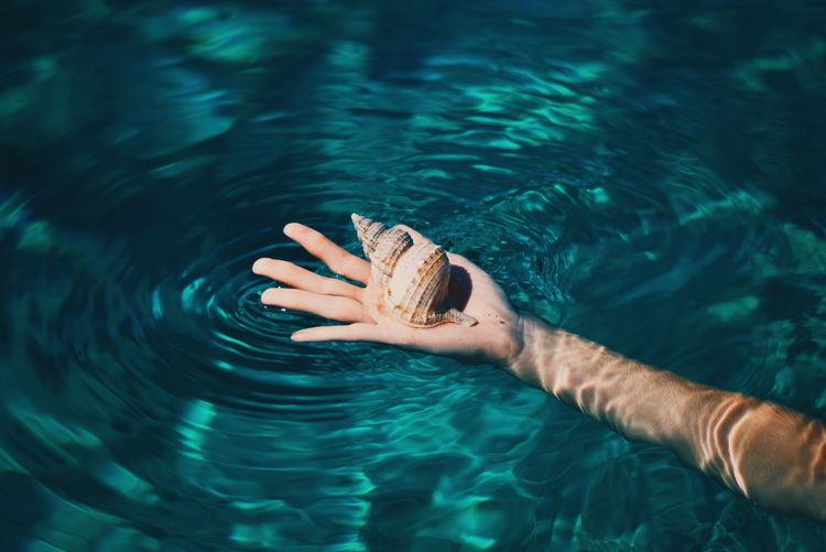 Cropped Hand Holding Seashell In Turquoise Sea