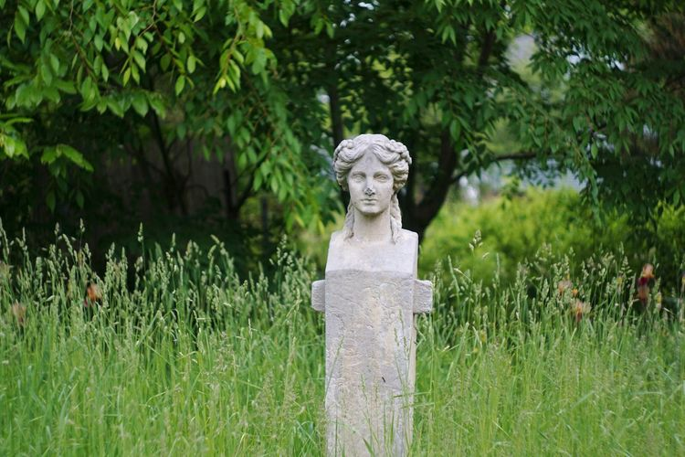 Statue Human Representation Sculpture Outdoors Nature Grass Tree Concrete Statue