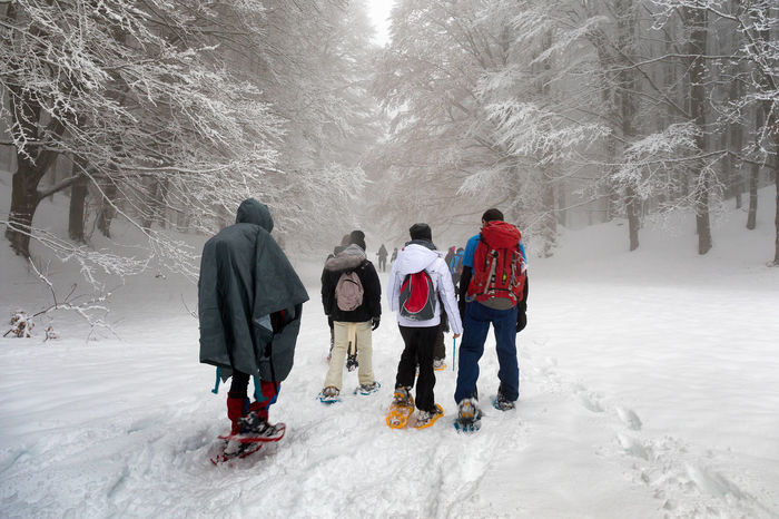 Subiaco, Italy - February 25, 2018: In the middle of winter, a group of people make an excursion on the snow-covered mountain, wearing snowshoes on their feet to avoid sinking in the fresh snow, with the help of trekking poles. Excursion Trekking Winter Beauty In Nature Cold Temperature Day Forest Friendship Frozen Full Length Leisure Activity Lifestyles Men Nature Outdoors People Real People Snow Snowing Snowshoes Togetherness Warm Clothing Weather Winter