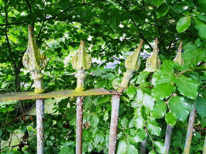 Rusty railings.
