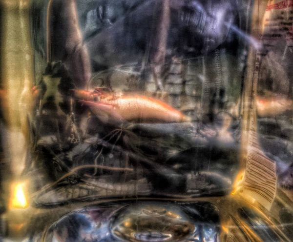 Fire - Natural Phenomenon Burning Glowing Animal Themes Fishing Lure Outside Day Behind Coconut Oil Plastic Reflections Lookingthrough  Nature Abstract Backgrounds Colors Light And Shadow Sunlight And Shadow