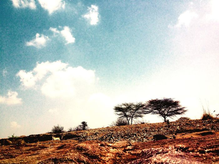 Stones Trees Clouds Atmosphere Nature Love Quality Time Travelling On The Road Hello World