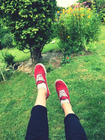 Holiday POV Summer Holiday Hanging Out Relaxing Taking Photos Enjoying Life Vans Nature