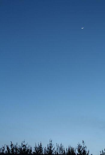 Moon Tacking Photos Sky_collection