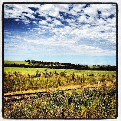 #bellarine #railtrail #sunshine #cloudporn #rustytracks #myhometown Sunshine Cloudporn Railtrail Myhometown Bellarine Rustytracks