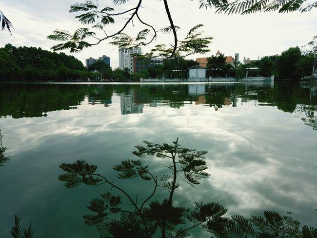 校园一角 Water Reflection Tree Lake Cloud - Sky Outdoors No People Sky Day Landscape Nature