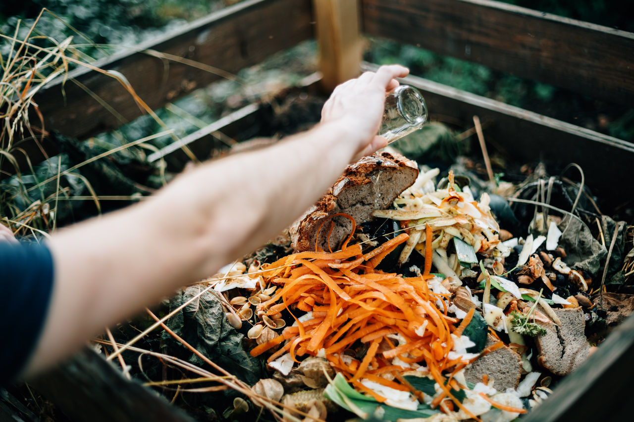 High angle view of person discarding compost