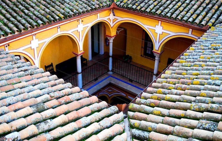 Sevilla Patio Rooftop