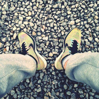 Nike Flynit Lunalunera