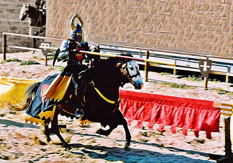 Torneo Caballero Medieval Torneo JuanRosillo EyeEm Gallery Eye4photography  Art is Everywhere Diversion Color Photography EyeEm Nature Lover Exposición Art Food Espectaculo