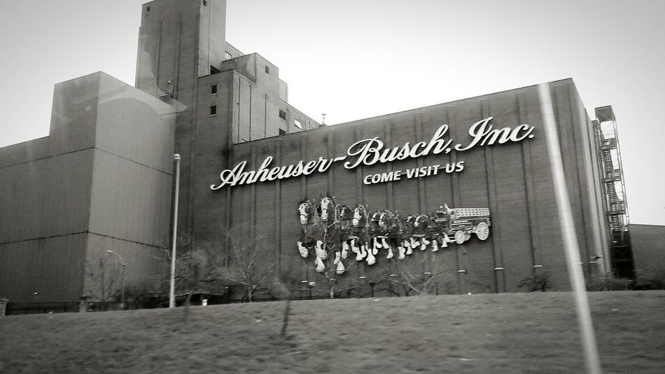 Saint Louis Busch Beer Factory Taking Photos Check This Out Enjoying Life Mid Day Black And White Photography Black & White Priceless Moment  A Sight To Behold Amazing Anheuserbusch Looking Out Of The Window Taken With Phone