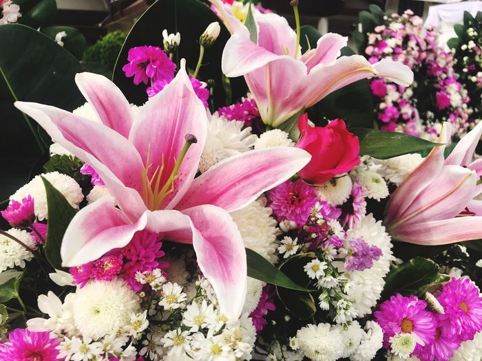 Flowers bouquet in fresh tone Beautiful Gift Paper Flower Purple Pink Tulips🌷 White Flower Orchid Yerbera Flower Flowering Plant Plant Fragility Vulnerability  Pink Color Beauty In Nature Freshness Petal Flower Head Inflorescence Nature Pollen Stamen Botany Growth