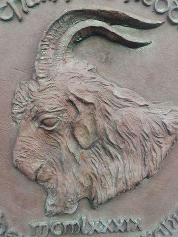 The Skerries goat St Patrick's Day St. Patrick  St Patrick Skerries Ireland Goat Myth Story Legend Irish Folklore Folklore