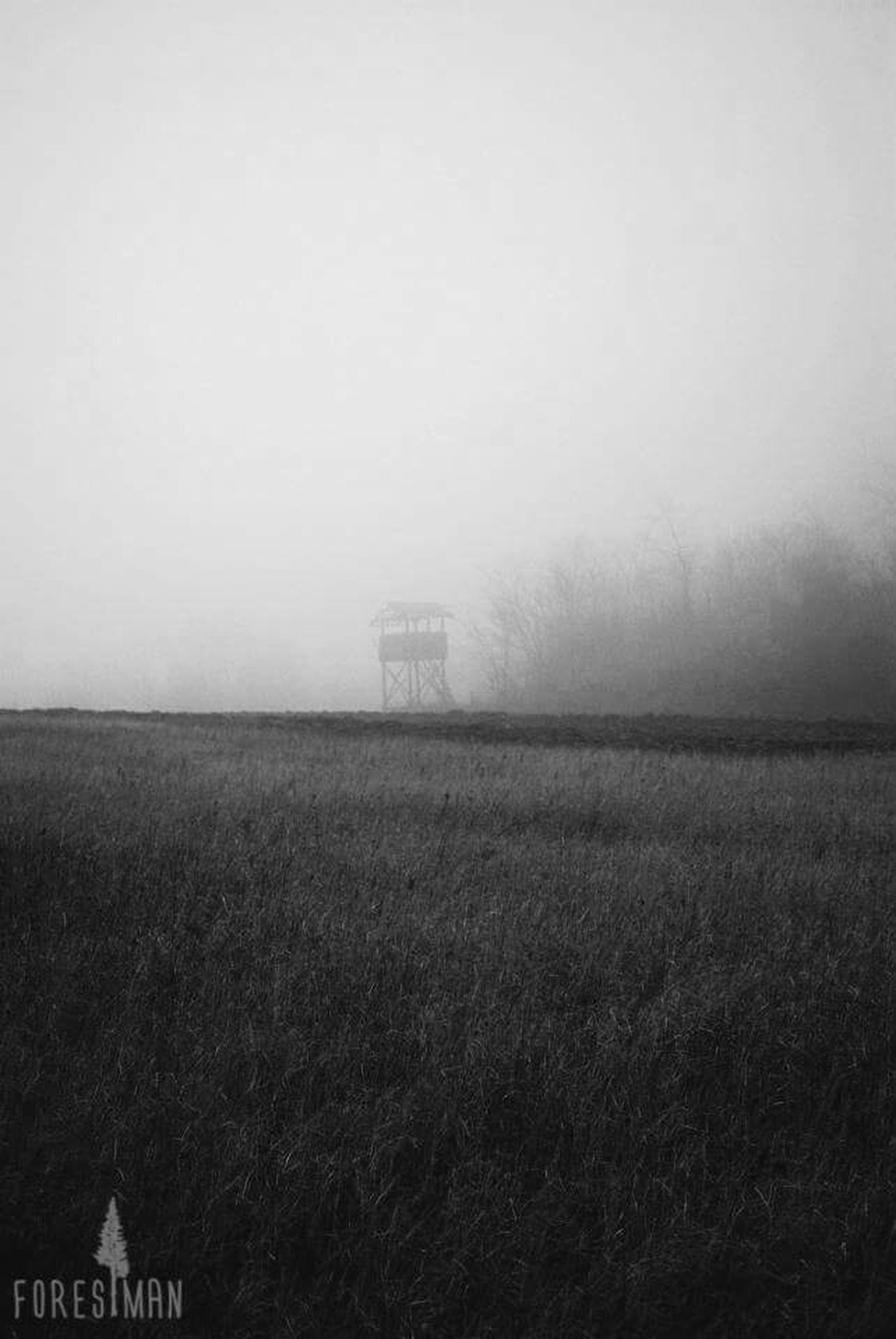 field, fog, copy space, landscape, foggy, grass, built structure, tranquil scene, tranquility, weather, architecture, building exterior, nature, scenics, rural scene, sky, grassy, beauty in nature, day