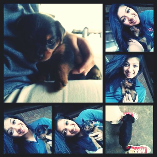New Puppy♥