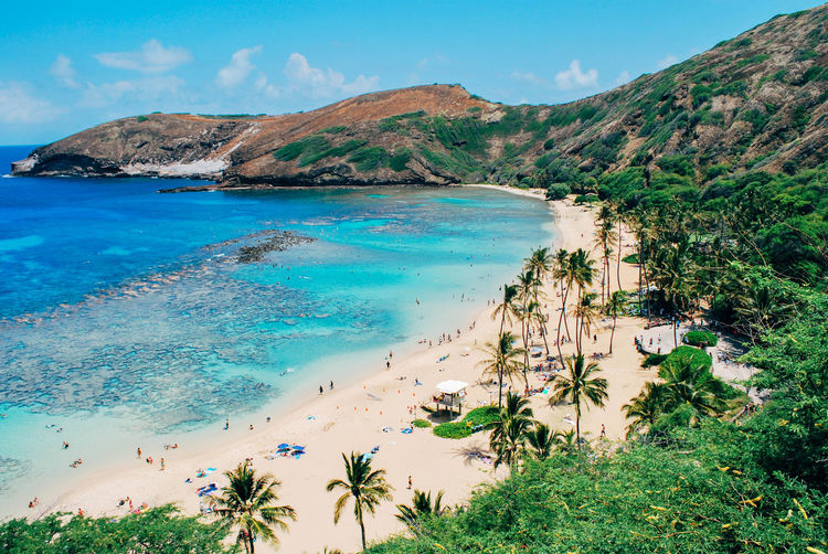 Hanauma Bay, Oahu, Hawaii Water Beauty In Nature Tranquil Scene Sea Mountain Tranquility Nature Beach Plant Sky Day Tree Blue Idyllic Tropical Climate Outdoors Bay гавайи Oahu Oahu, Hawaii Hanauma Bay Getty Images Palm Tree Holiday Paradise