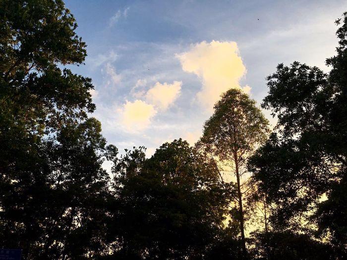 石芽岭雨后傍晚的天空