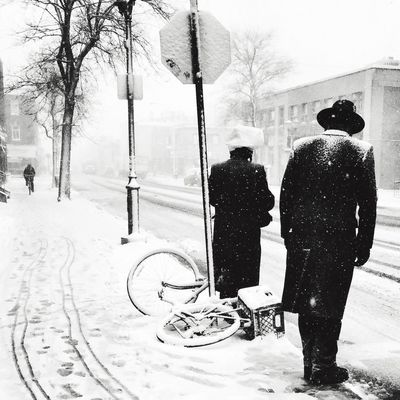 Back in the snow Winter Snow Streetphotography Blackandwhite Streetphoto_bw EyeEm Best Shots - Black + White