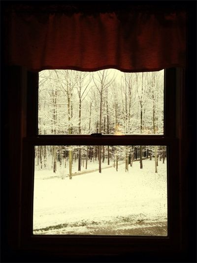 I love this view from my kitchen window ❄