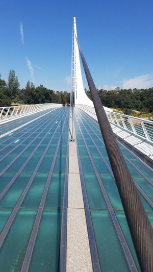 Sundial Bridge Steel Futuristic Cable Dramatic The Week On EyeEm Environmental Conservation Mindful Zen Natural Light No Edit Quality Of Life Walking Walkway Green Glass Idyllic Outdoors Intense Solar Alternative Energy Tourquise Sundial Bridge Cables Angle