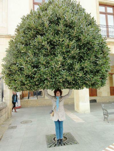España Ronda The Human Condition Human Tree Tree Proveyouaregreen