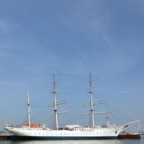 Gorch Fock I Harbor Sailing Ship Stralsund  Soloparking Balticsea Gorchfock Barque