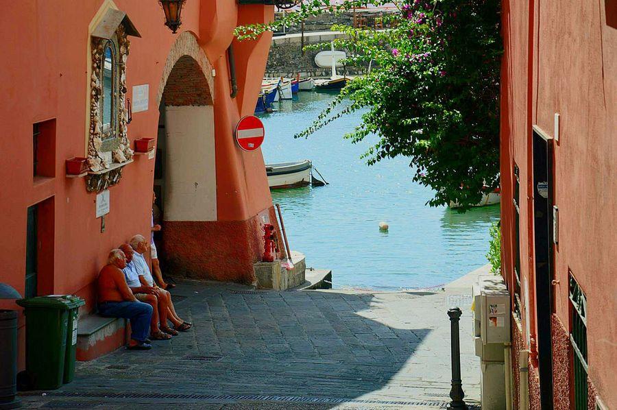 Camogli Liguria Italia Italy❤️ Passeggiate Sole Mare Relax Dolcevita  Dolcefarniente  Walking Around The City  Sun Seaside Sea View Sea_collection Sea Life Slow Life