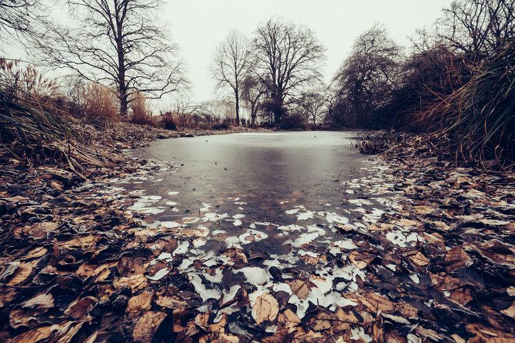 Frozen lake during winter